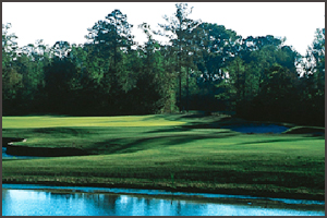 Hilton Head Golf Packages | Eagles Pointe Golf Course