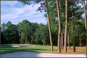Hilton Head Golf Packages | Golden Bear at Indigo Run Golf Course