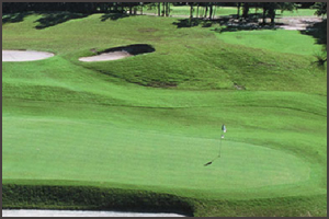 Hilton Head Golf Packages | Hilton Head national golf course