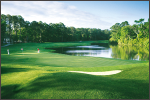 Hilton Head Golf Packages | Arthur Hills Golf Course