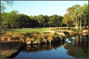 Hilton Head Golf Packages | Port Royal Barony Golf Course