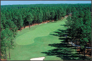 Pinehurst Golf Packages | Pinewild Golf Club